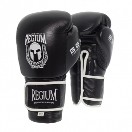 Boxing Gloves Regium Imperial DX